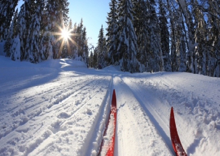 C. Cross Country Skiing